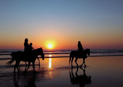 Cayucos-Beach-Horseback-Riding